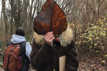 A person outdoors holds a big brown leaf in front of their head