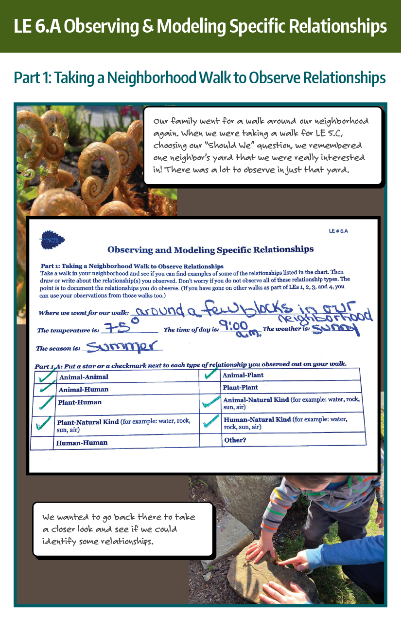 Family Storyline Example LE 6.A, taking a neighborhood walk to observe relationships