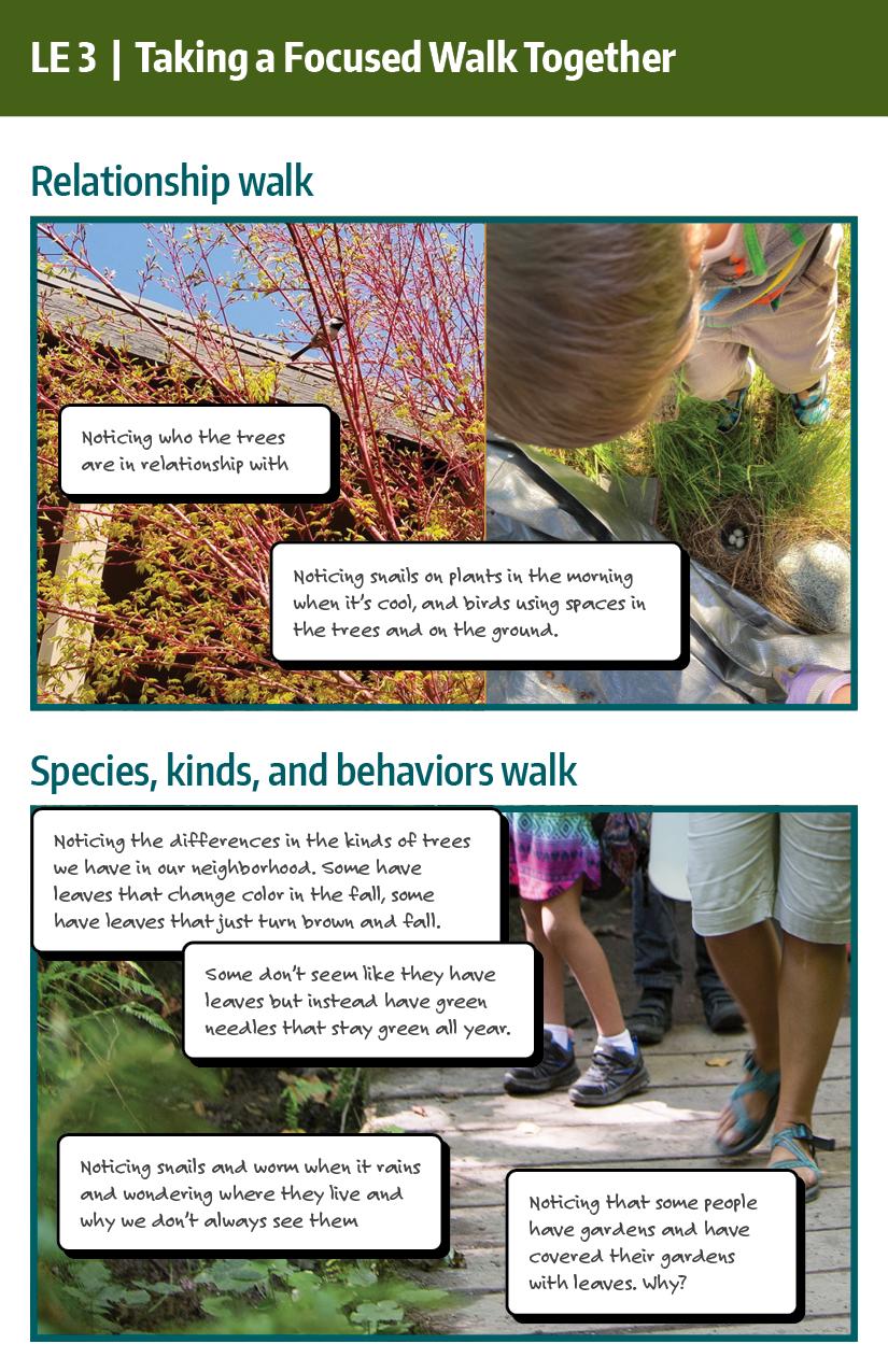 Focused Walk example: relationship walk