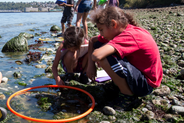 Children counting biodiversity at the beach