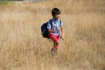 Child walking through a field in the sun
